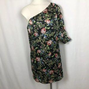 Anthro Hazel Silk Dress ~ One Shoulder ~ lined